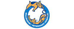 Willoughby Veterinary Hospital Logo