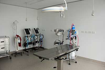 NEVS animal hospital operating theatre